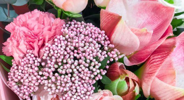 Роза-путешественница: чем хороши цветы из Голландии и Эквадора?
