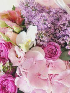Какие цветы дарить на Новый год?